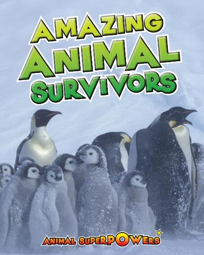 Amazing Animal Survivors - Read Me!: Animal Superpowers (Paperback)