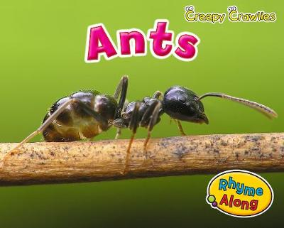 Ants - Early Years: Creepy Crawlies (Hardback)