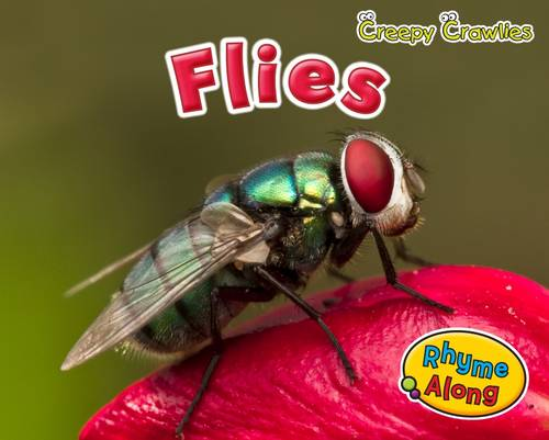 Flies - Early Years: Creepy Crawlies (Paperback)