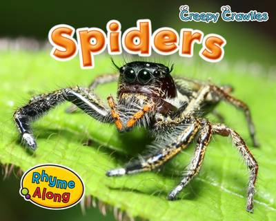 Spiders - Early Years: Creepy Crawlies (Paperback)