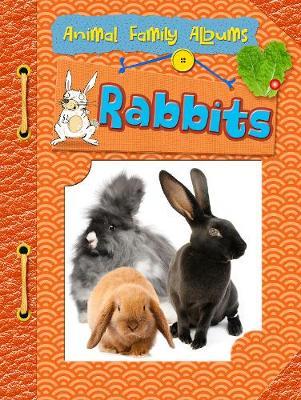 Rabbits - Raintree Perspectives: Animal Family Albums (Hardback)