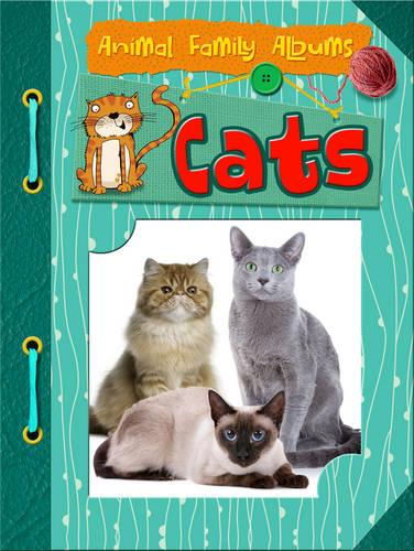 Cats - Raintree Perspectives: Animal Family Albums (Paperback)