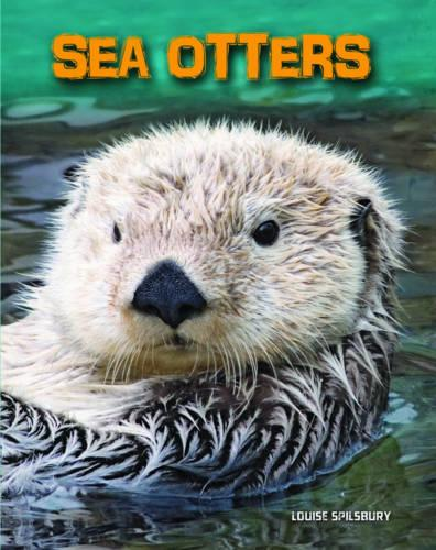 Sea Otters - InfoSearch: Living in the Wild: Sea Mammals (Paperback)