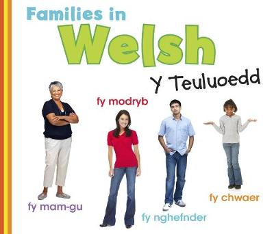 Families in Welsh: Y Teuluoedd - World Languages - Families (Hardback)
