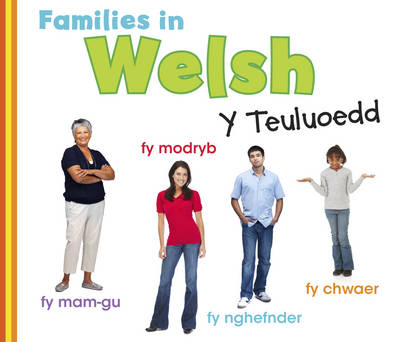 Families in Welsh: Y Teuluoedd - World Languages - Families (Paperback)
