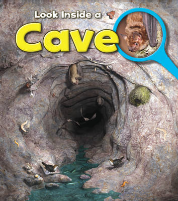 A Cave - Young Explorer: Look Inside (Paperback)
