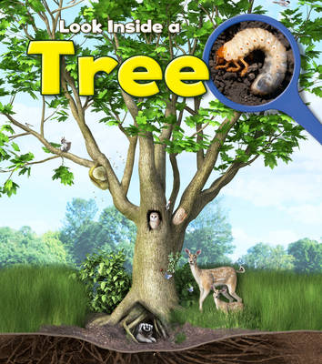 Tree - Young Explorer: Look Inside (Paperback)