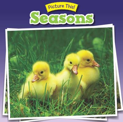 Seasons - Picture This! (Paperback)