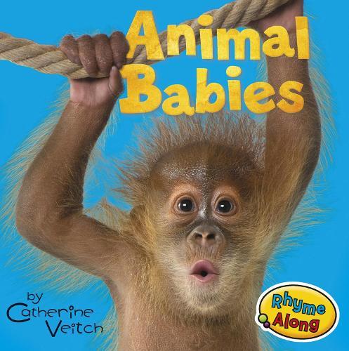Animal Babies - Acorn: Animal Babies (Board book)