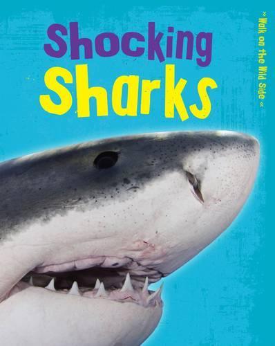 Shocking Sharks - Read Me!: Walk on the Wild Side (Paperback)
