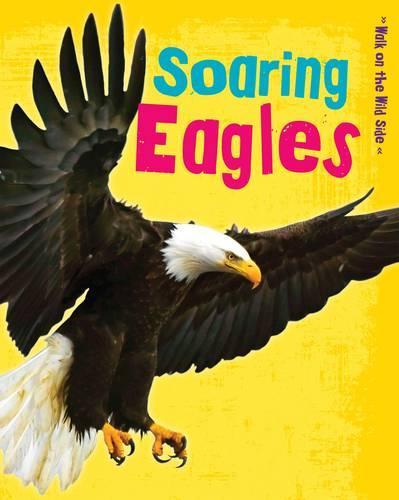 Soaring Eagles - Read Me!: Walk on the Wild Side (Paperback)