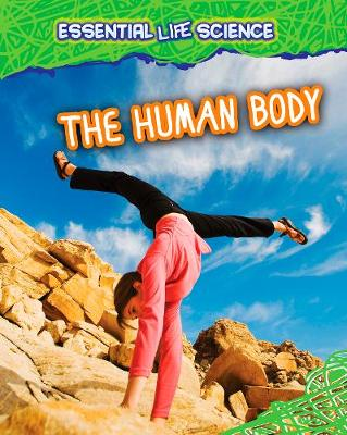 The Human Body - Infosearch: Essential Life Science (Hardback)