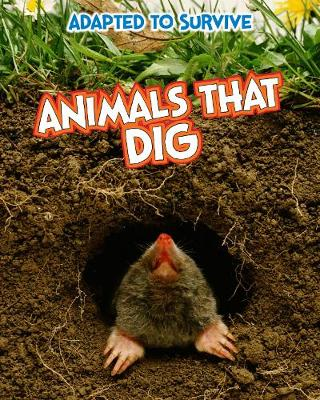 Adapted to Survive: Animals That Dig - Read Me!: Adapted to Survive (Hardback)