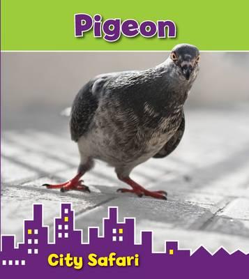 Pigeon: City Safari - Read and Learn: City Safari (Hardback)