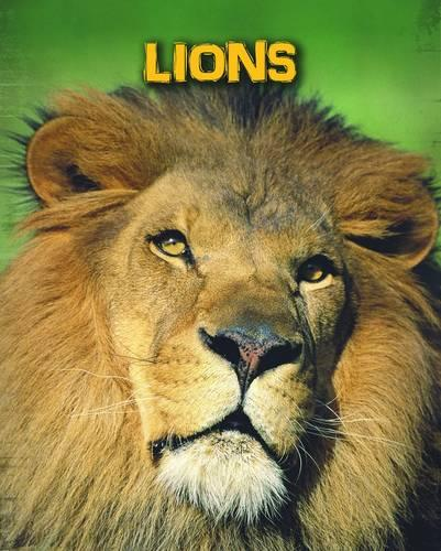 Lions - InfoSearch: Living in the Wild: Big Cats (Paperback)