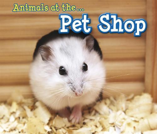 Animals at the Pet Shop - Acorn: Animals I Can See (Hardback)