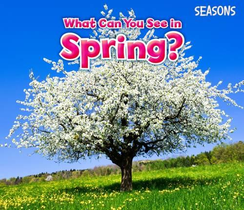 What Can You See In Spring? - Acorn: Seasons (Paperback)