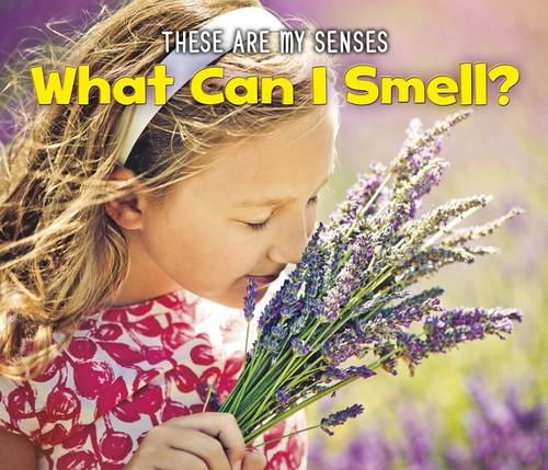 What Can I Smell? - Acorn: These Are My Senses (Paperback)