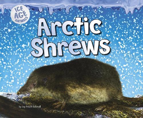 Arctic Shrews - Pebble Plus: Ice Age Animals (Hardback)