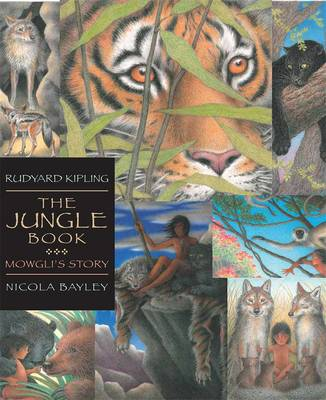 The Jungle Book - Walker Illustrated Classics (Paperback)