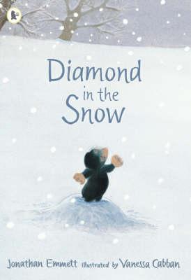 Diamond in the Snow (Paperback)