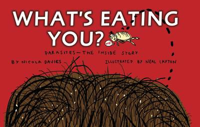 What's Eating You? (Paperback)