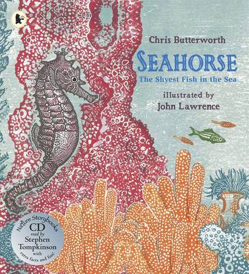 Seahorse: The Shyest Fish in the Sea - Nature Storybooks