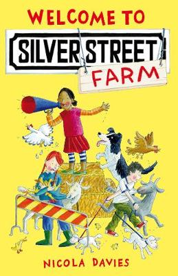 Welcome to Silver Street Farm - Silver Street Farm (Paperback)