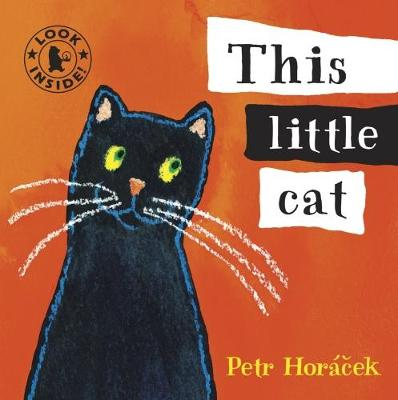 This Little Cat (Board book)