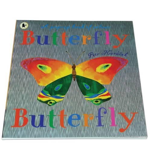Butterfly, Butterfly (Paperback)