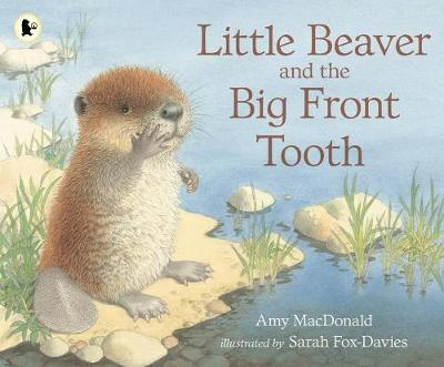 Little Beaver and the Big Front Tooth (Paperback)