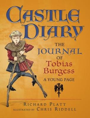 Castle Diary (Paperback)