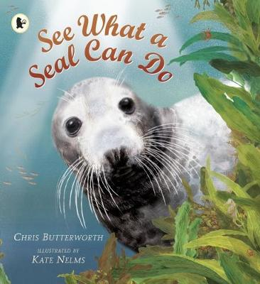 See What a Seal Can Do (Paperback)