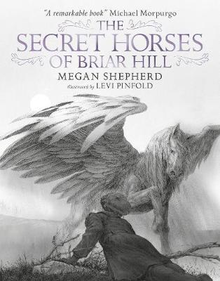 The Secret Horses of Briar Hill (Hardback)