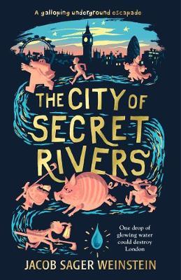 The City of Secret Rivers - City of Secret Rivers (Hardback)