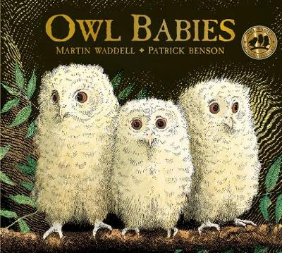 Cover of the book, Owl Babies.