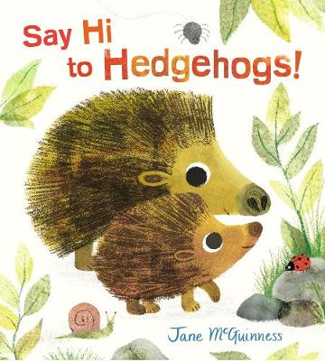 Say Hi to Hedgehogs! (Hardback)