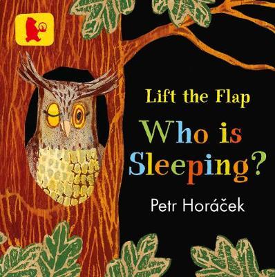 Who Is Sleeping? (Board book)