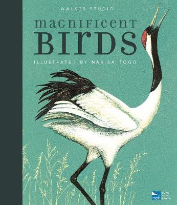 Magnificent Birds - Walker Studio (Hardback)