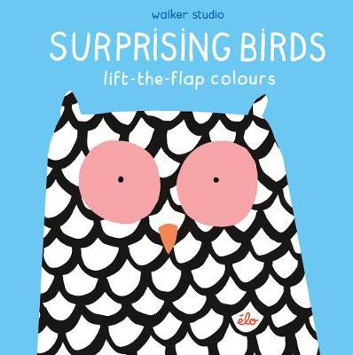 Surprising Birds: Lift-the-Flap Colours - Walker Studio (Hardback)