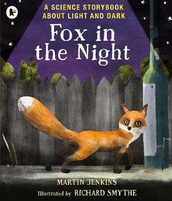 Fox in the Night: A Science Storybook About Light and Dark - Science Storybooks (Paperback)