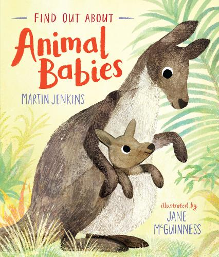 Find Out About ... Animal Babies - Find Out About ... (Hardback)