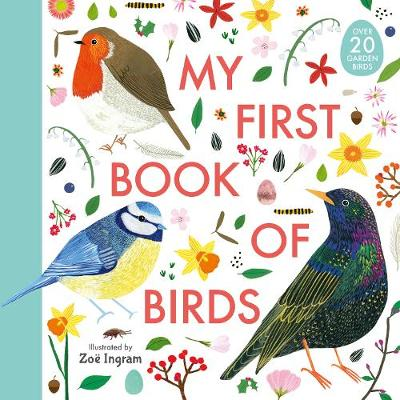 My First Book of Birds - My First Book of (Hardback)