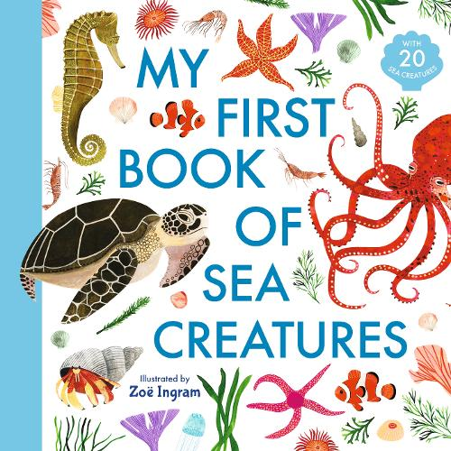 My First Book of Sea Creatures - My First Book of (Hardback)