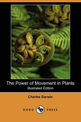 The Power of Movement in Plants (Illustrated Edition) (Dodo Press) (Paperback)