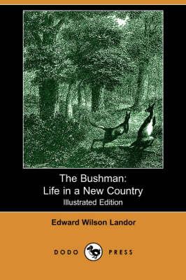 The Bushman: Life in a New Country (Paperback)