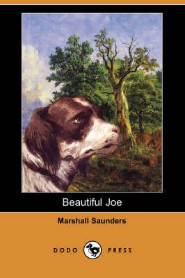 Beautiful Joe (Dodo Press) (Paperback)