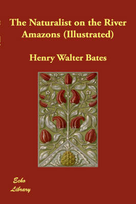 The Naturalist on the River Amazons (Illustrated) (Hardback)