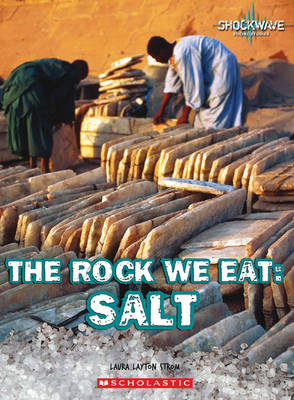 The Rock We Eat: Salt - Shockwave (Paperback)