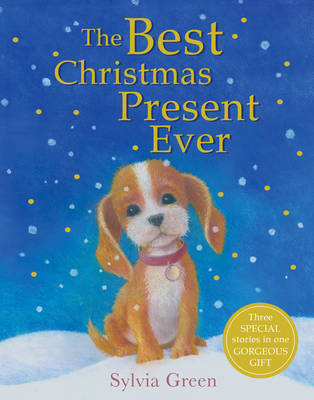 The Best Christmas Present Ever (Paperback)